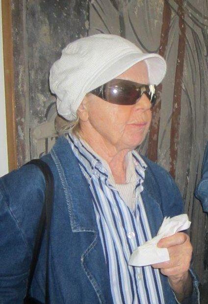 Olga Zirojević: Falafel