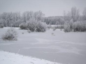 Река Тиса, током зиме